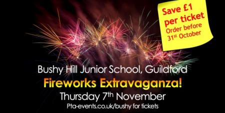 Bushy Hill Junior School Guildford Fireworks Extravaganza!